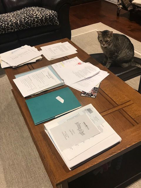 History Pojrect, Files On Coffee Table
